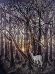 deer-in-forest-Alexi