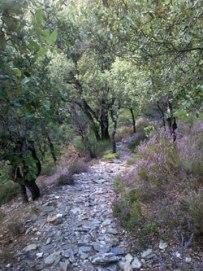mountain-path-nr-gardoussel